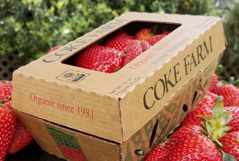 Coke Farm partners with ReadyCycle®